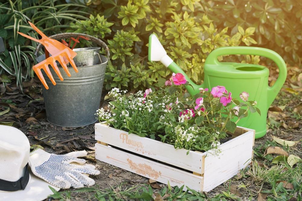 Jardim e ferramentas