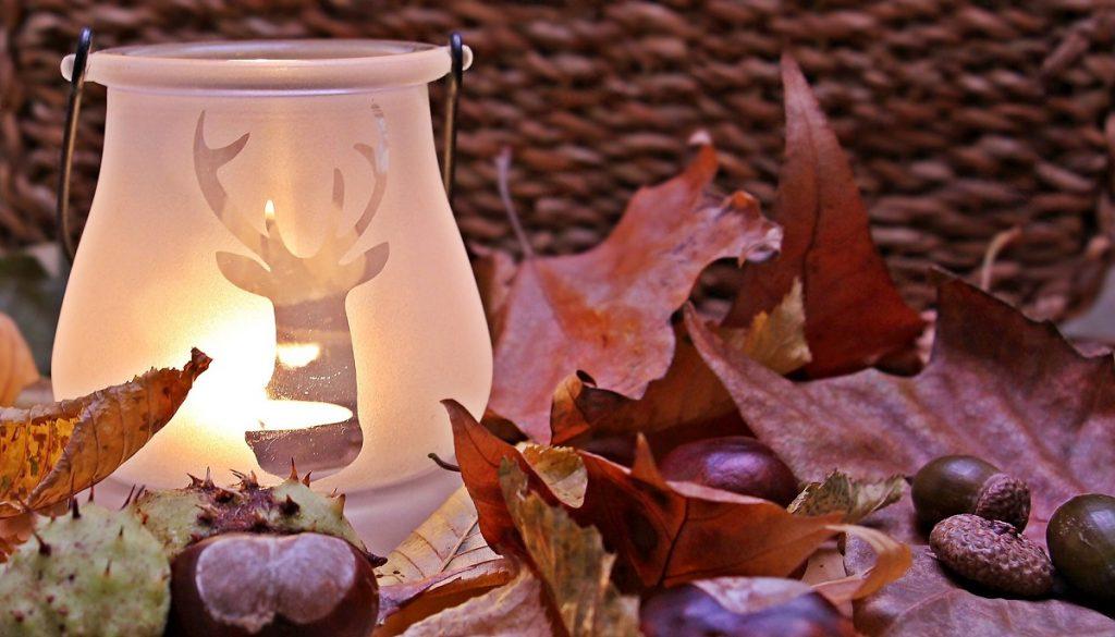 Dicas para quem deseja decorar a casa para o outono